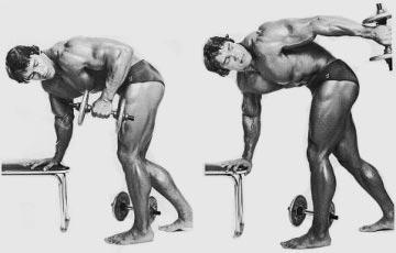 Kickback avec haltère - Musculation.tn