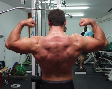 musculation des épaules