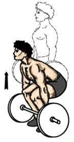 Couché sur la machine a ischios ou banc, tête face au sol; mettre un coussin sous les hanches si le banc est plat pour éviter d'être en position d'hyperlordose.