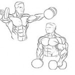 Lateral dumbell raise