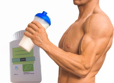 protéine d'oeuf