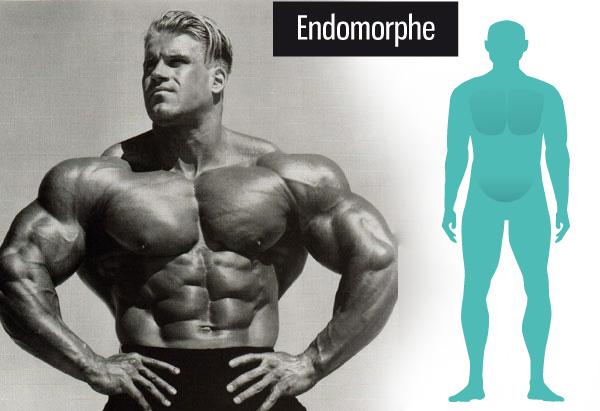 bruleur de graisse endomorphe